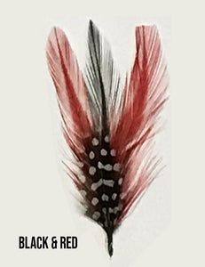 "Stetson Feathers  4 Inch"" Length - Chicano Spot"