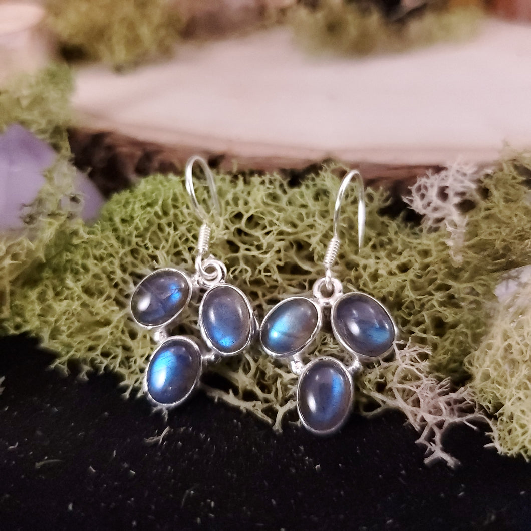 Labradorite Grape Bunch Earrings