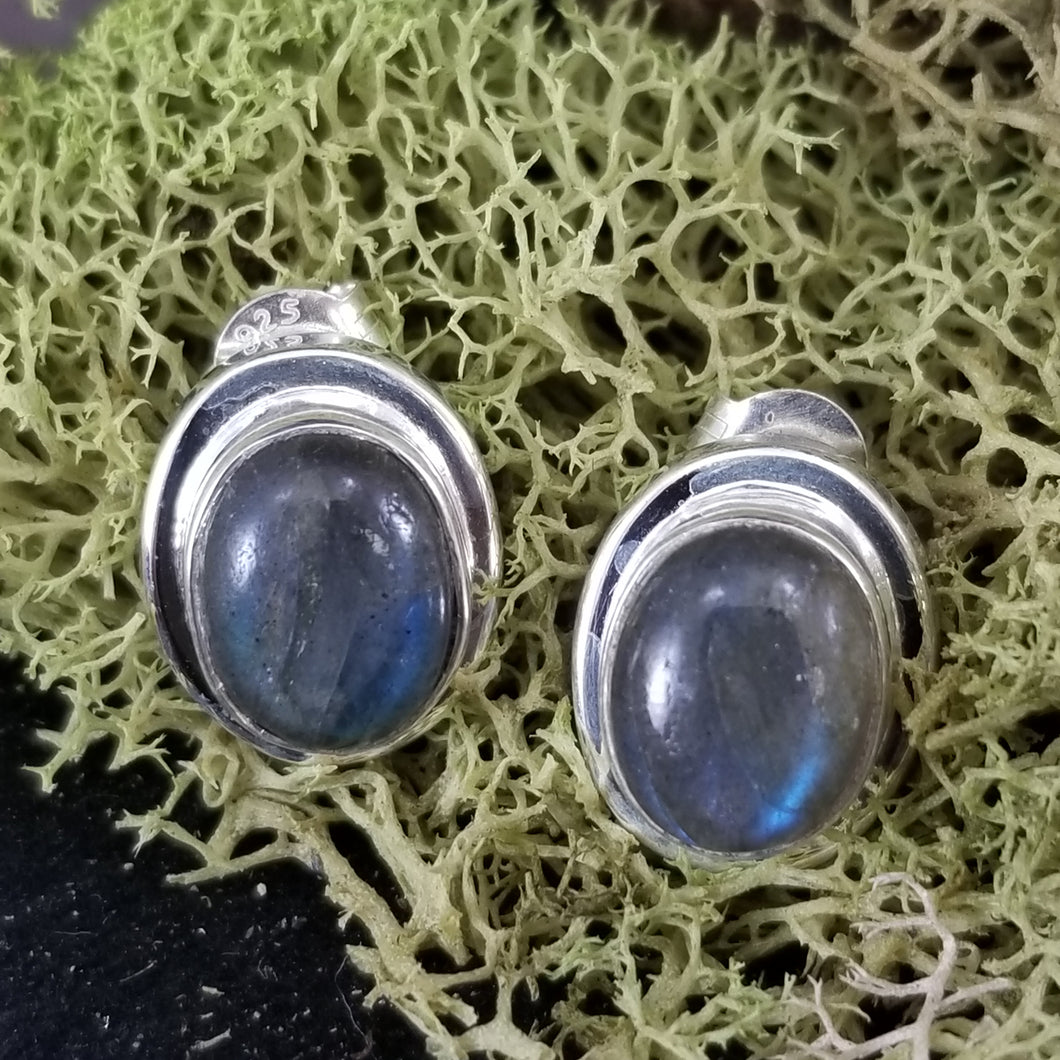 Labradorite Shield Simple Flare Earrings