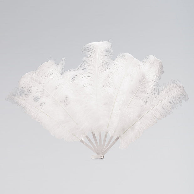 Large Feather Fan