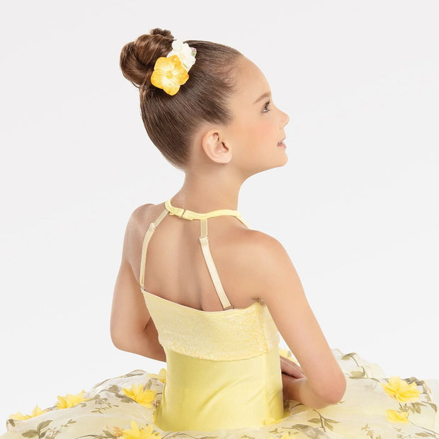 Beautiful Day Ballet Costume