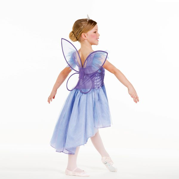 Fairy Dress With Detatchable Wings