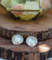 Atlantis Pearly Nautilus Shell Earrings