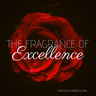 The Fragrance of Excellence - USB
