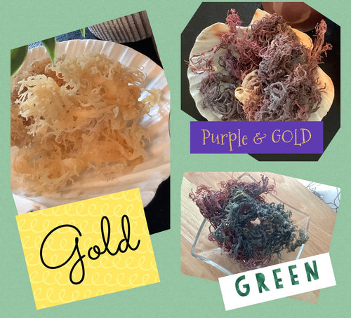 RAW Wild Crafted Sea Moss (YOU HAVE TO MAKE THE GEL ON YOUR OWN)