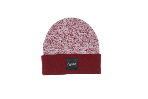 2021 Autumn Surplus Blocked Beanie in Burgundy