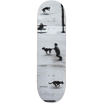 Polar Skate Co Paul Grund Dog Studies Skate Deck