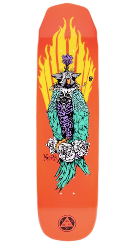 Welcome Nora Vasconcellos Peregrine on Wicked Princess Skate Deck in 8.125