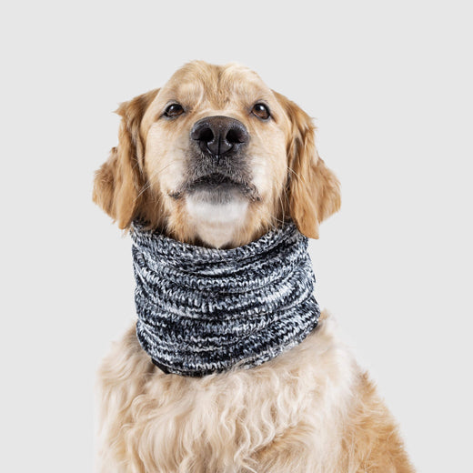 Chenille Dog Snood in a Black Mix, Canada Pooch Dog Scarf