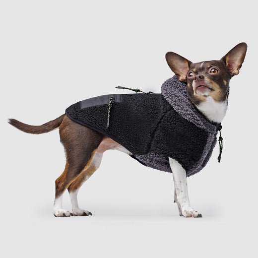 Cool Factor Dog Hoodie in Black Grey, Canada Pooch Dog Sweater