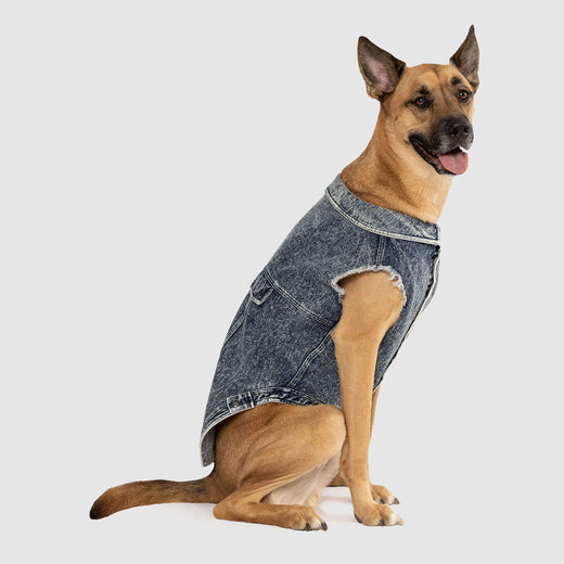 Downtown Denim Vest in Blue, Canada Pooch Dog Denim Vest