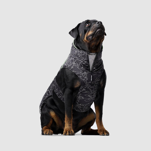 Expedition 2.0 Dog Coat in Reflective Camo, Canada Pooch Dog Coat