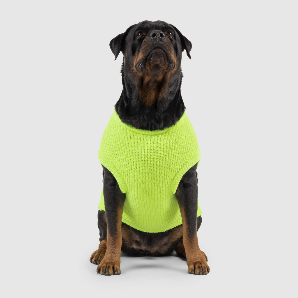 Highlighter Dog Sweater in Neon Green, Canada Pooch Dog Sweater