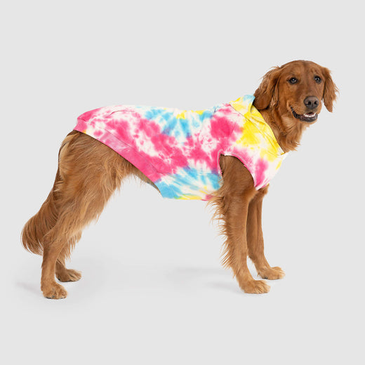 No Authority Dog Hoodie in Tie Dye, Canada Pooch Dog Sweater