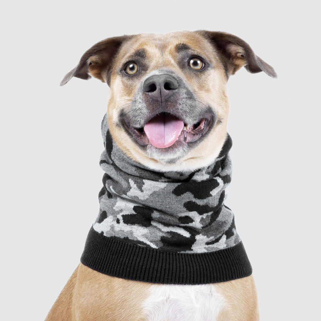 Northern Knit Dog Snood in Back Camo, Canada Pooch Dog Snood