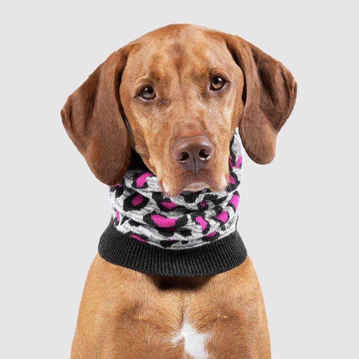 Northern Knit Dog Snood in Leopard, Canada Pooch Dog Snood