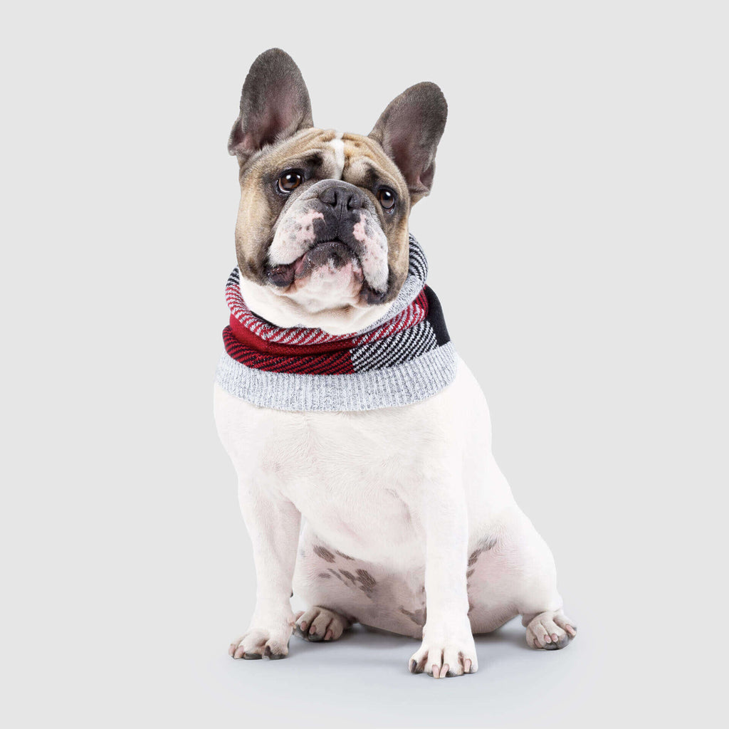 Northern Knit Dog Snood in Red & Grey Plaid, Canada Pooch Dog Snood