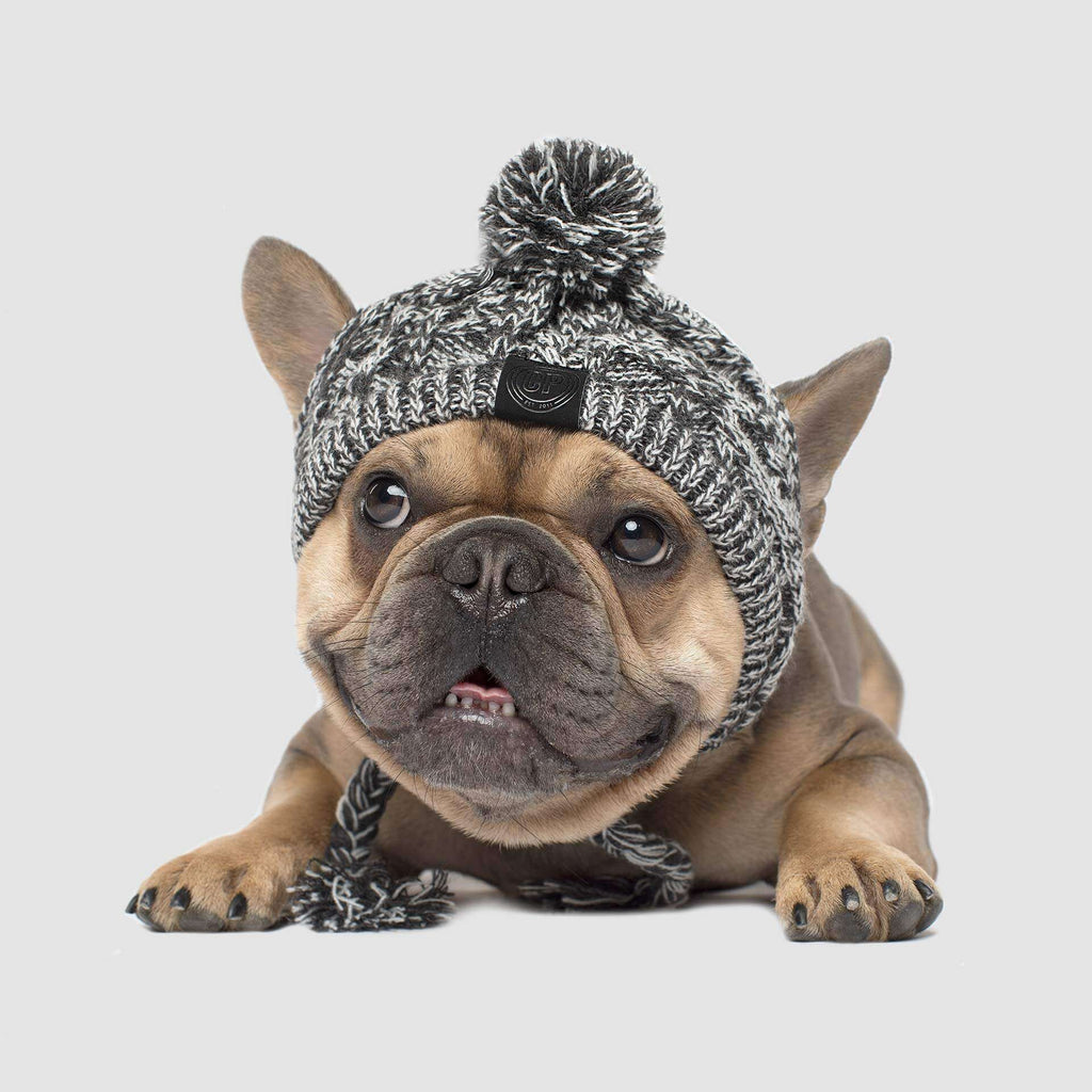 Polar Pom Pom Dog Hat in Charcoal Grey, Canada Pooch Dog Hat
