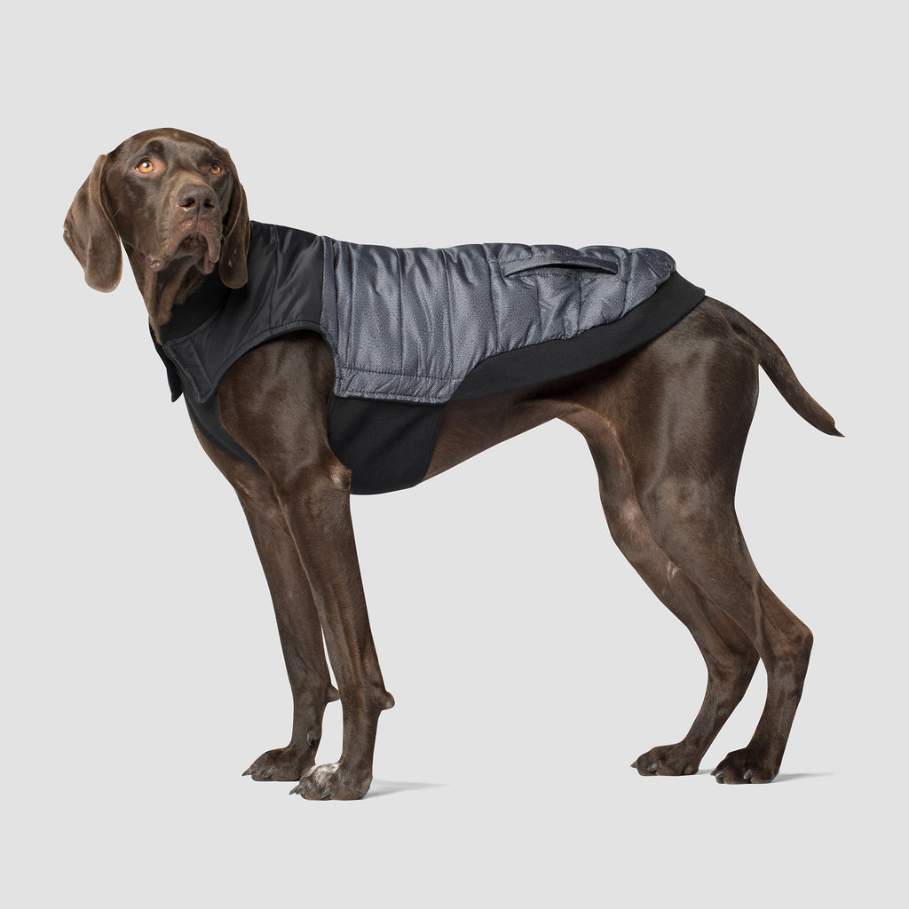 Summit Stretch Dog Vest in Grey Pepper, Canada Pooch Dog Puffer Vest