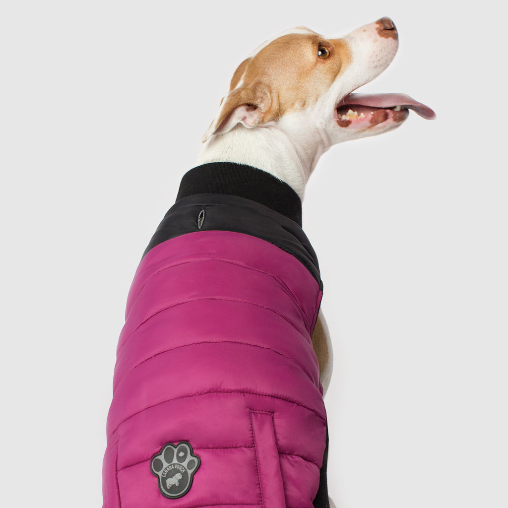 Summit Stretch Dog Vest in Pink Plum, Canada Pooch Dog Puffer Vest