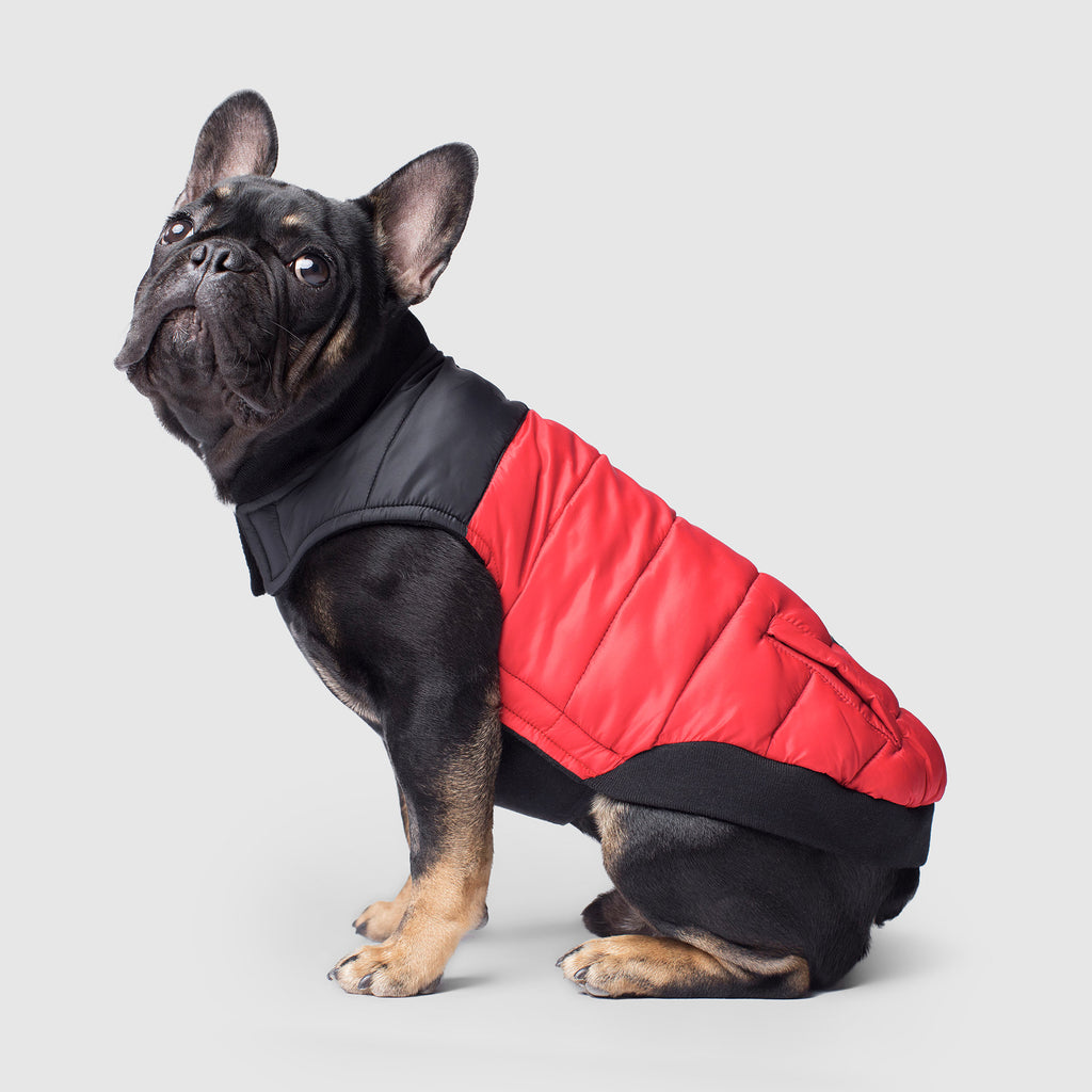 Summit Stretch Dog Vest in Red, Canada Pooch Dog Puffer Vest