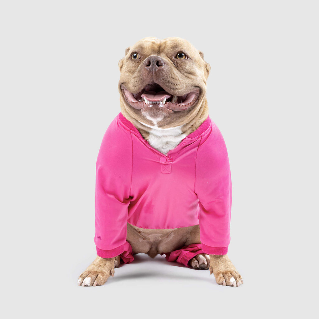 Tear-A-Way Dog Onesie in Pink, Canada Pooch Dog Sweatsuit