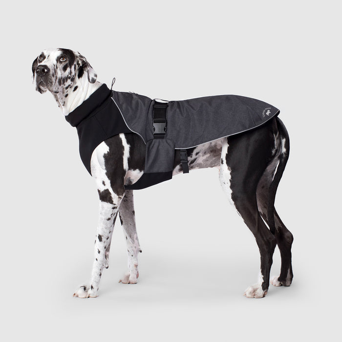 Expedition Dog Coat in Charcoal, Canada Pooch Dog Coat