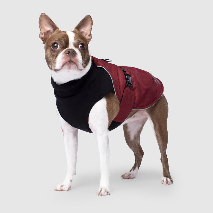 Expedition Dog Coat in Red, Canada Pooch Dog Coat