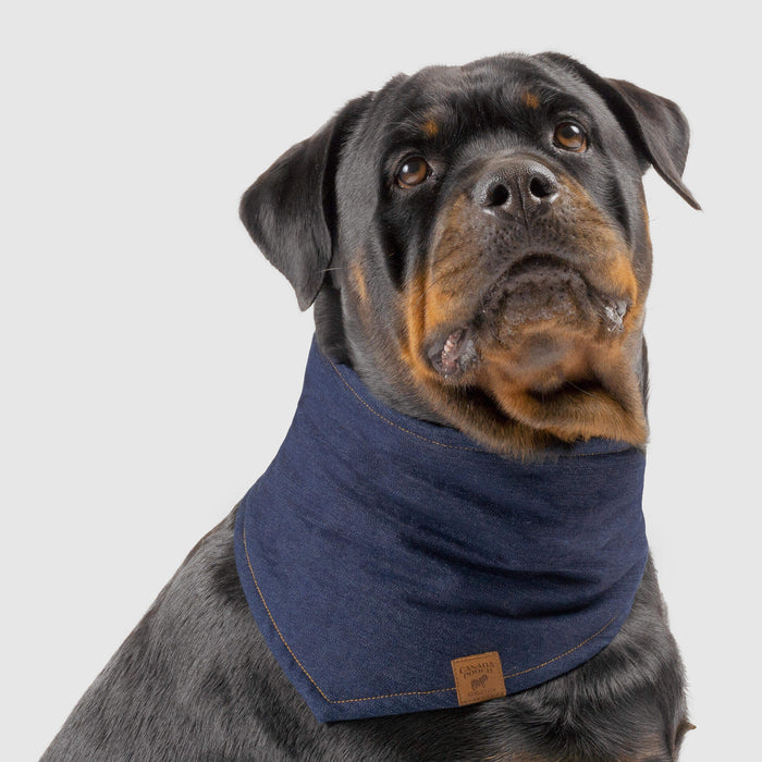 The Worker Dog Bandana in Blue Denim, Canada Pooch Dog Bandana