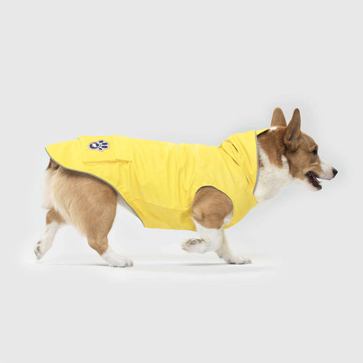 Torrential Tracker Dog Rain Jacket in Yellow, Canada Pooch Dog Raincoat