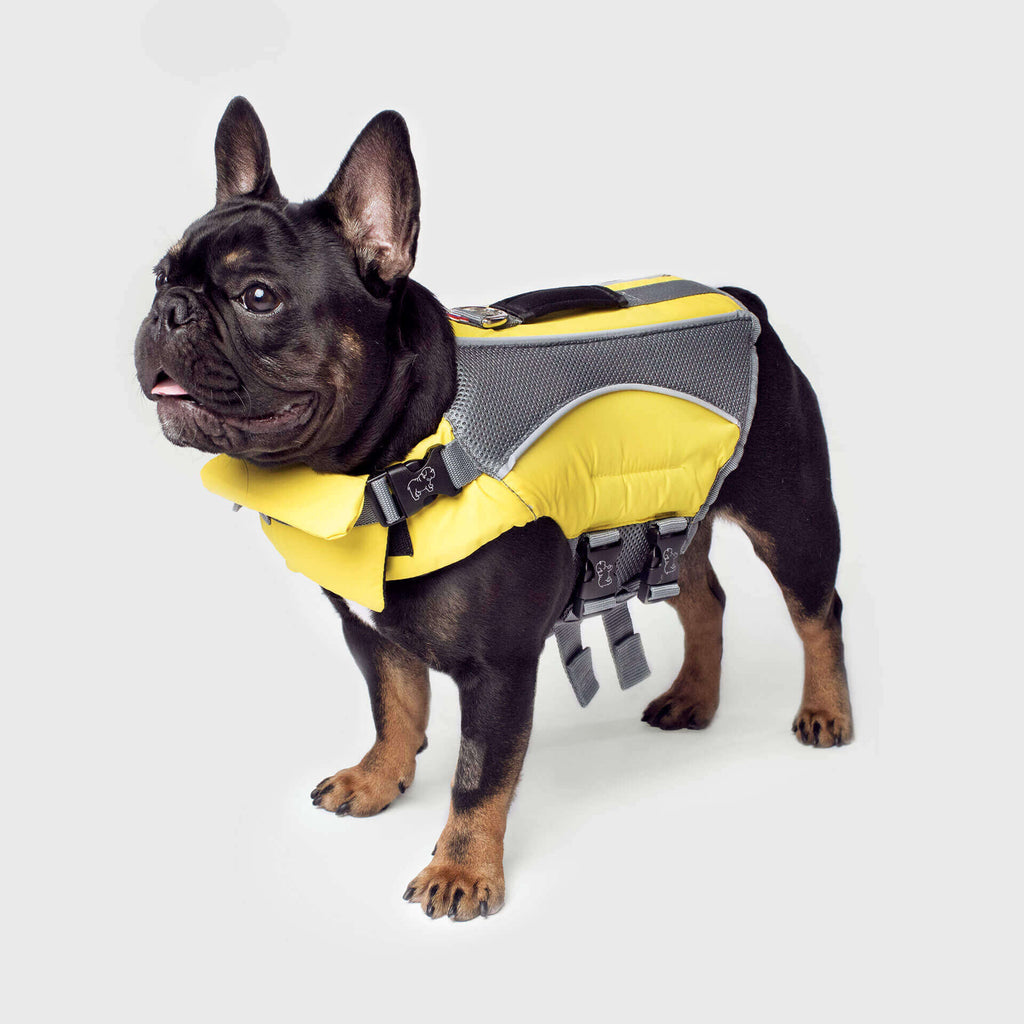 The Wave Ride Life Vest in Yellow, Canada Pooch Dog Life Jacket