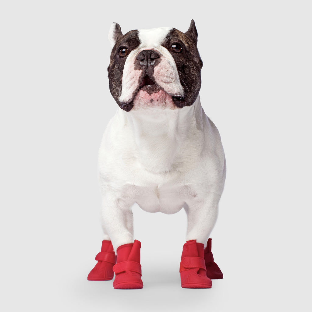 Wellies Unlined Dog Boots in Red, Canada Pooch, Dog Boot