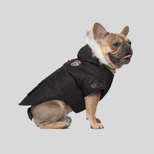 Winter Wilderness Dog Parka in Black, Canada Pooch Dog Parka