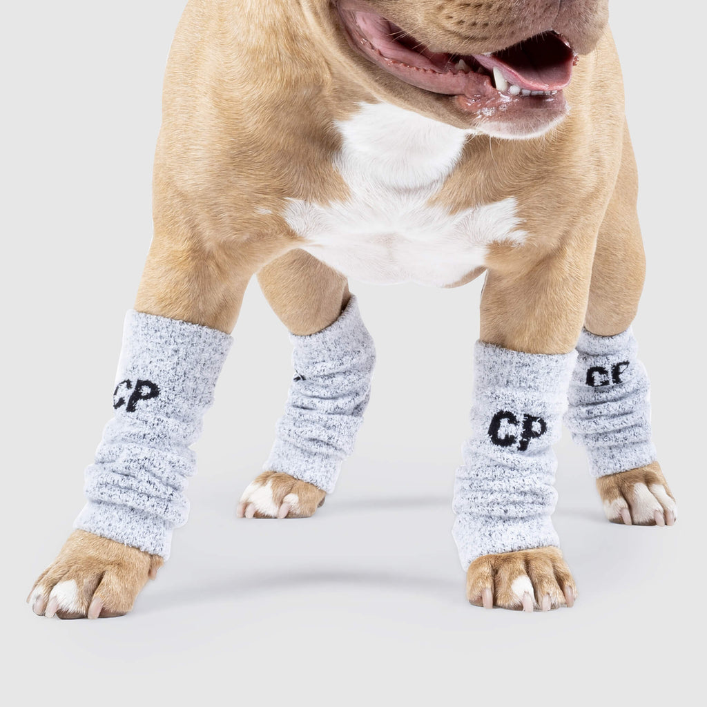 Work It Dog Leg Warmers in Grey, Canada Pooch Dog Leg Warmers