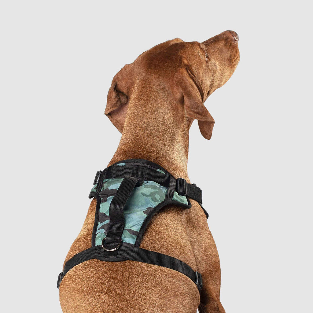 The Everything Dog Harness in Green Camo, Canada Pooch Dog Harness