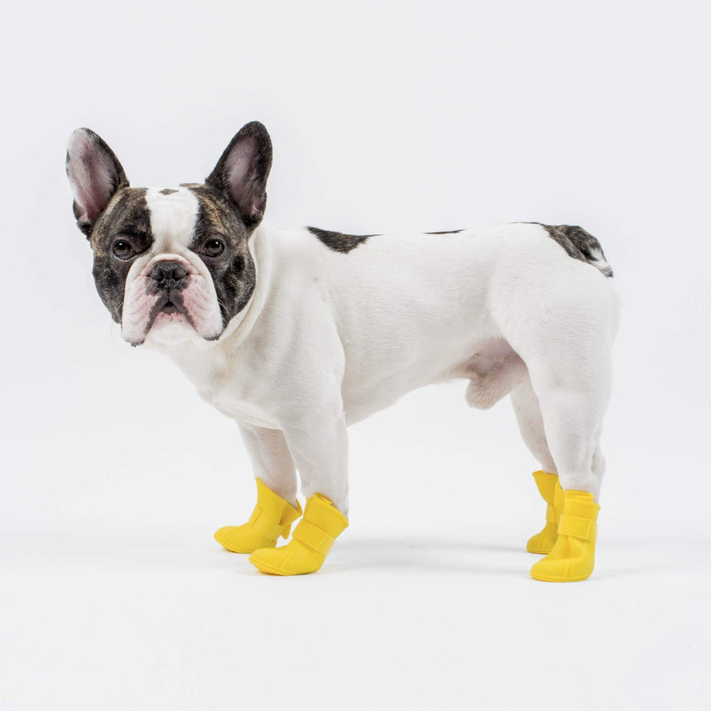 Wellies Unlined Dog Boots in Yellow, Canada Pooch, Dog Boot