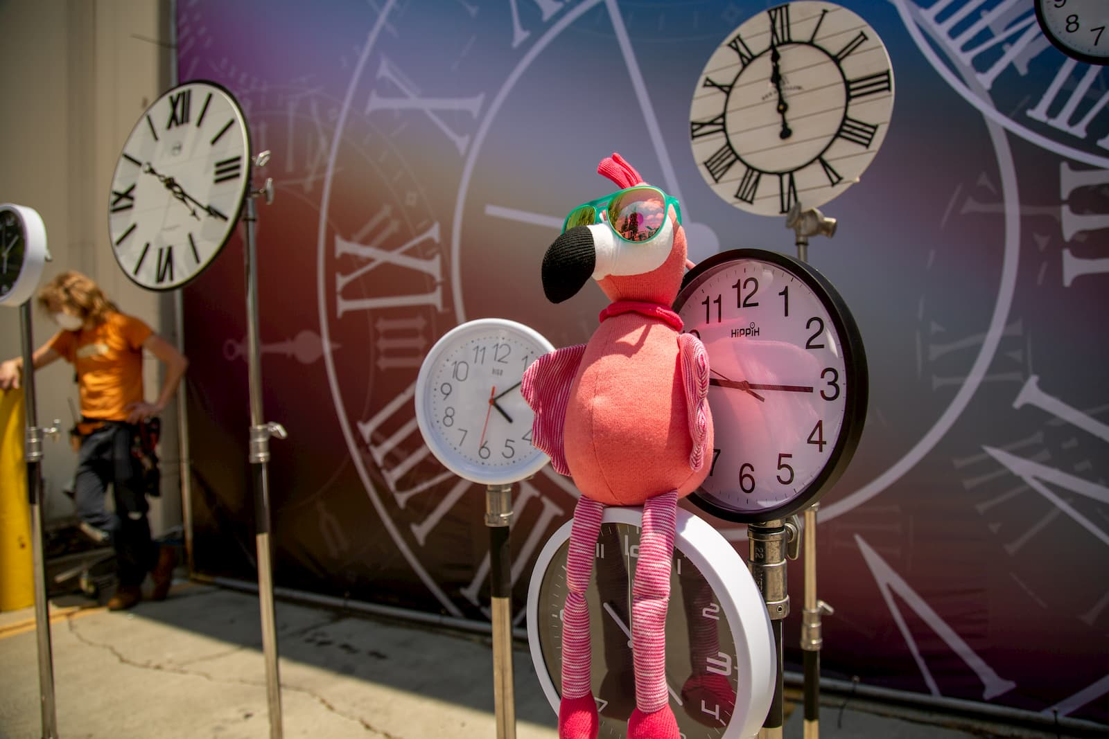 flamingo wearing goodr sunglasses and clocks