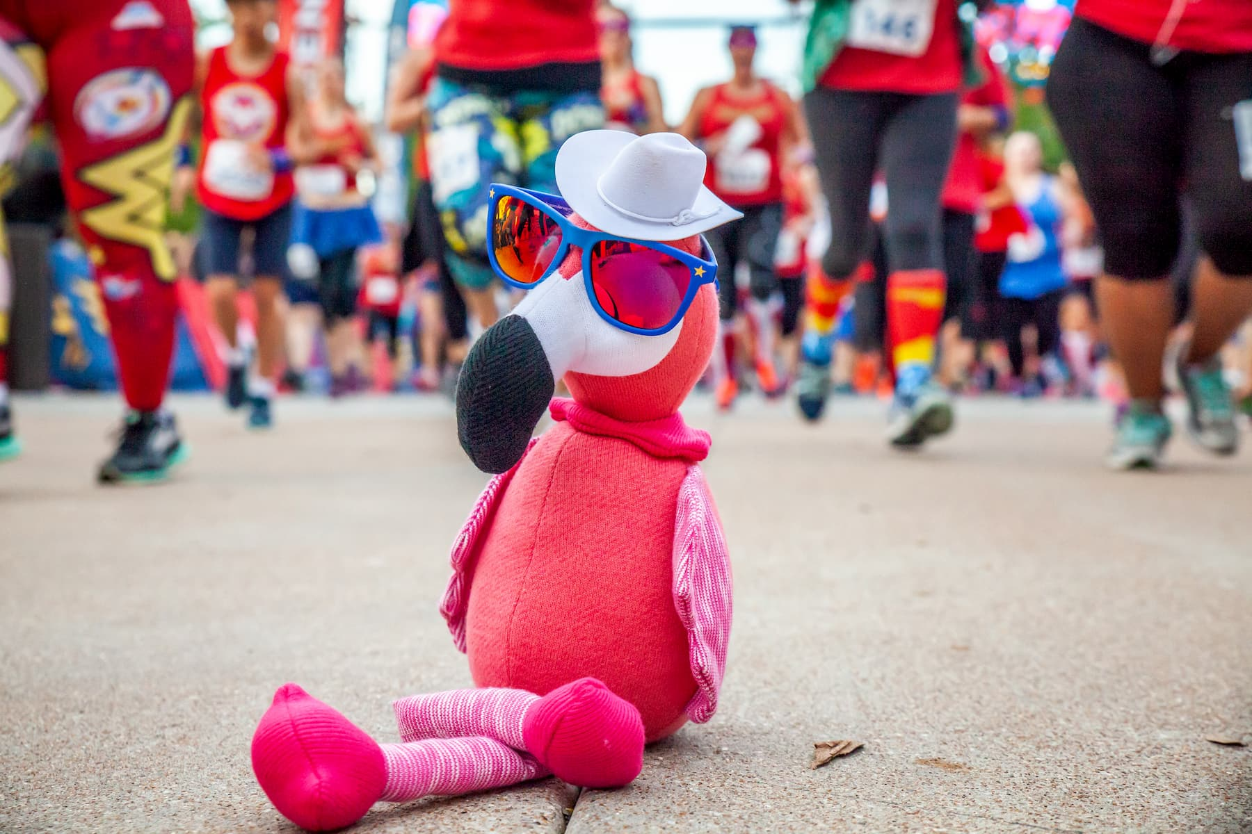 goodr CEO carl the flamingo at a running race wearing a hat and sunglasses