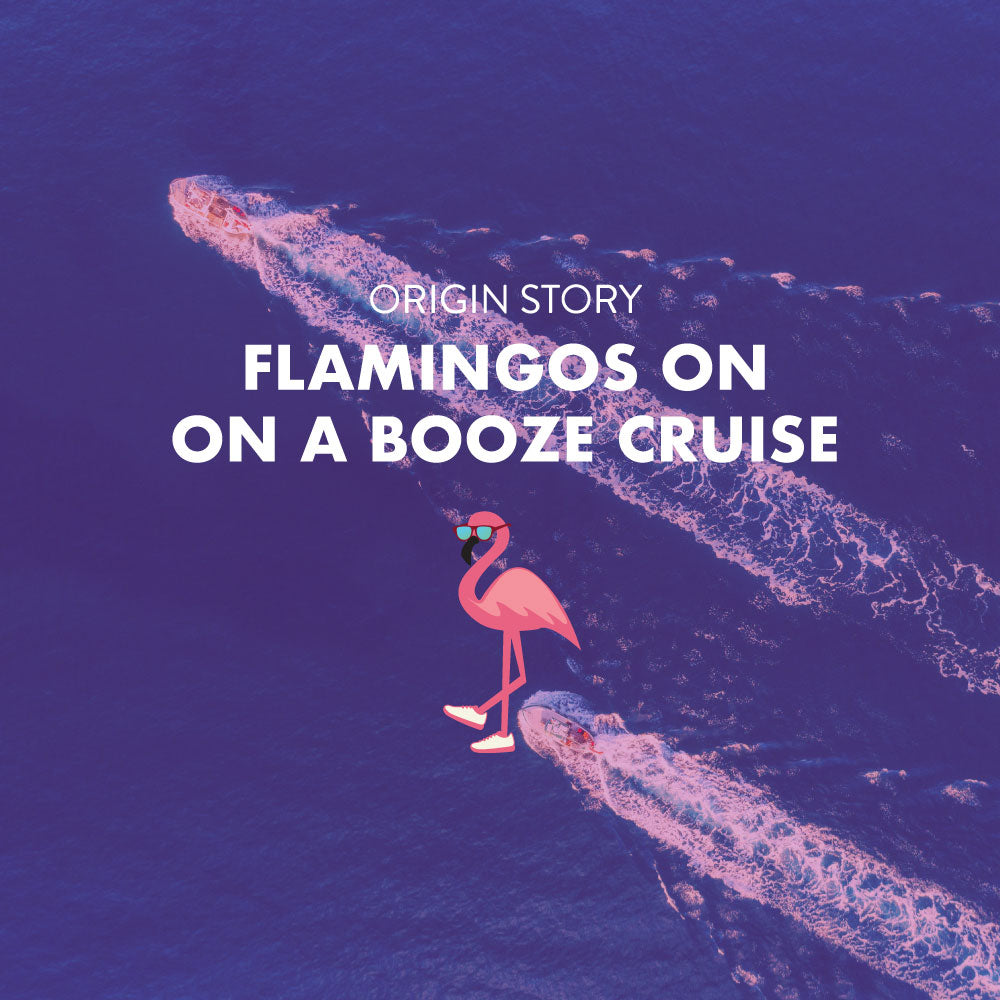 Goodr Flamingos on a Booze Cruise, OGS – Polarised Sunglasses