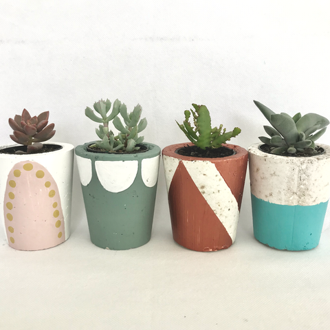 Cement Pot -DIY Kit