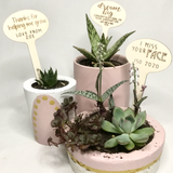 PERSONALISED Plant Sticks - Add your own message