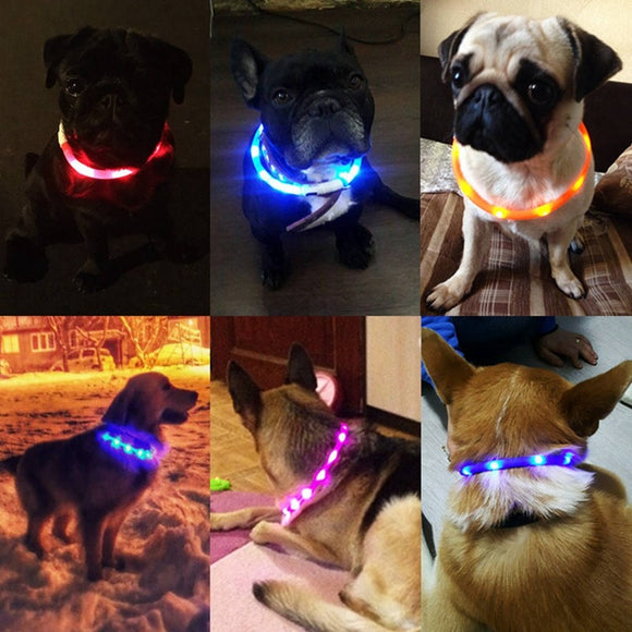 Nylon Pet Dog Collar LED Light Night Safety Warning Illuminated Flashing Glow Cat Dog Collars for dogs Pet Supplies  MartLion.com