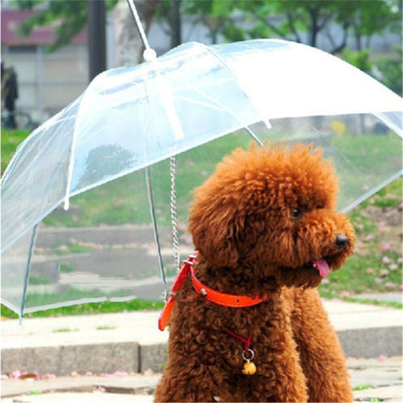 Useful Transparent PE Pet Umbrella Small Dog Umbrella Rain Gear with Dog Leads Keeps Pet Dry Comfortable in Rain Snowing - Mart Lion  Best shopping website