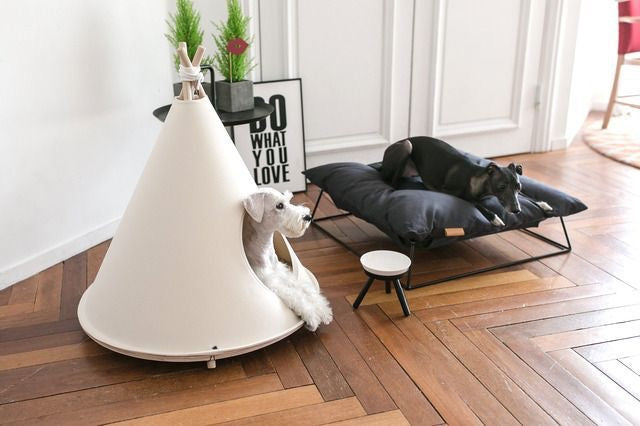 Luxury Pet Boutique, Modern Dog Beds, Small Dog Beds