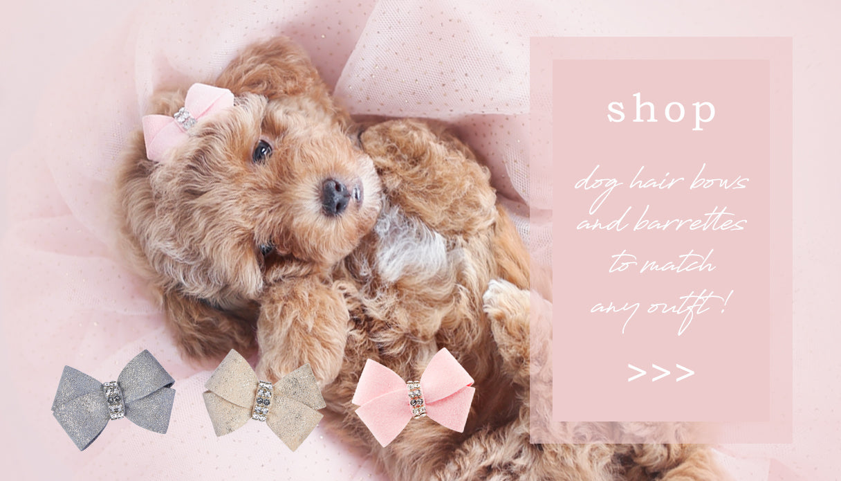 luxury pet boutique - dog hair bows and barrettes for small dogs and teacup puppies