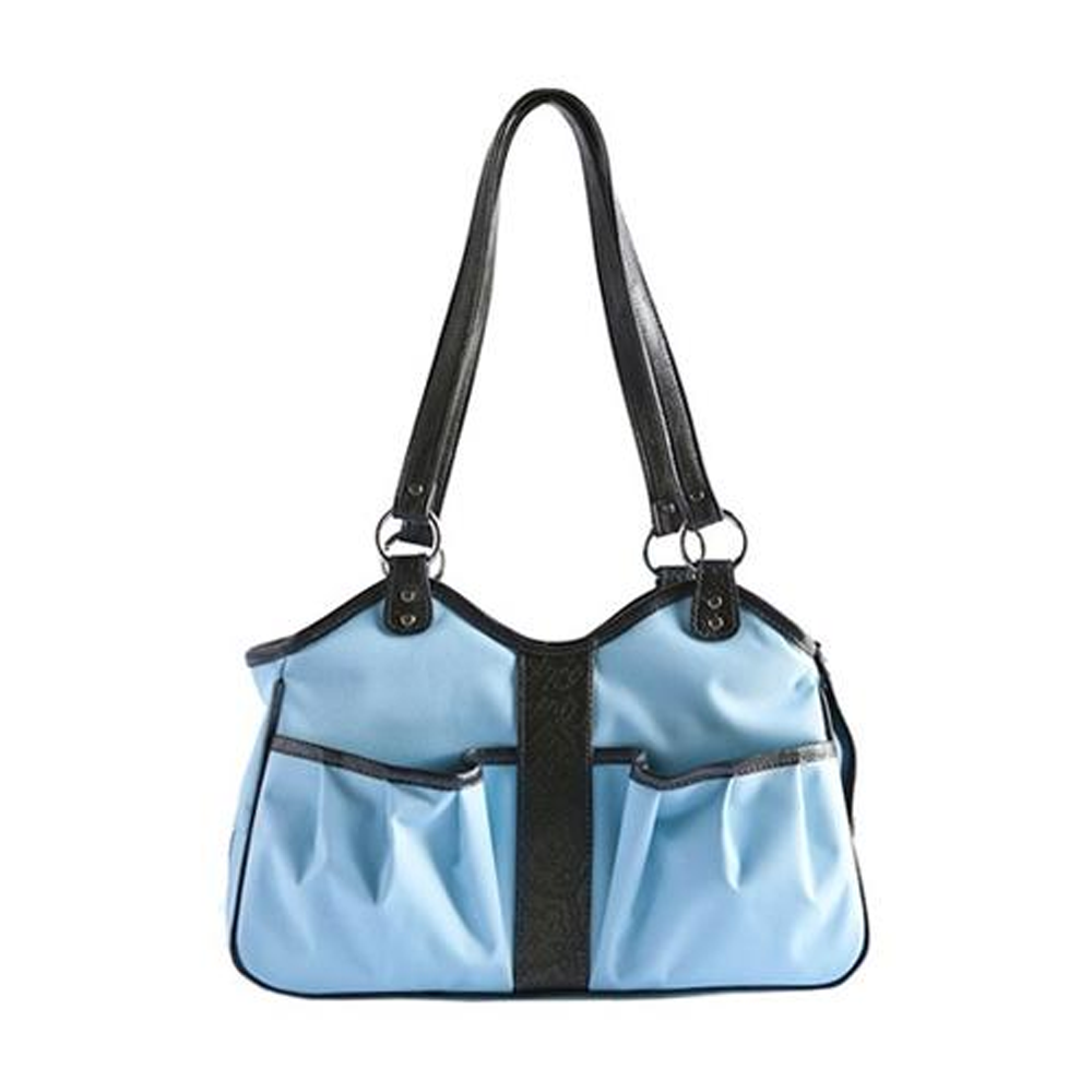 Metro Pet Carrier: Turquoise
