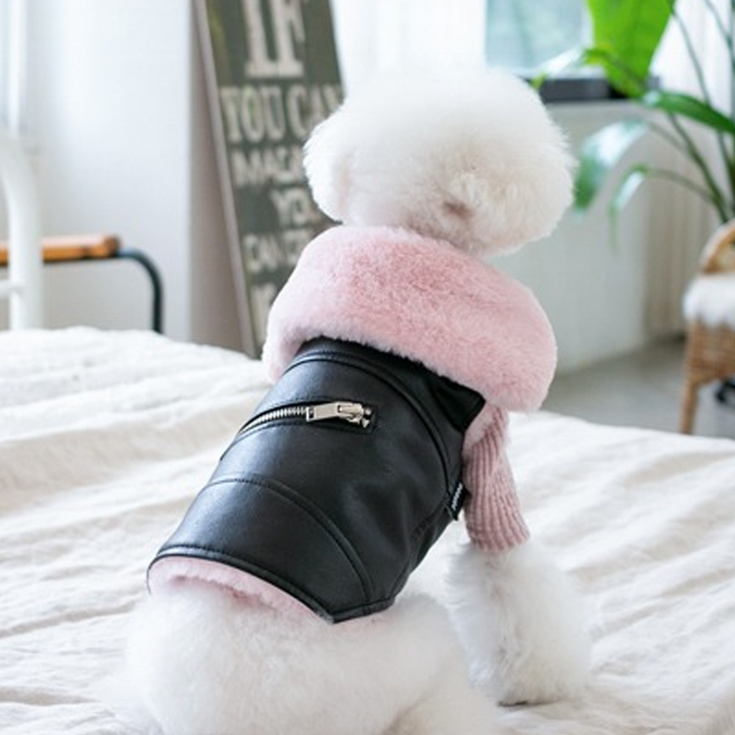 Faux Fur Dog Biker Jacket: Black