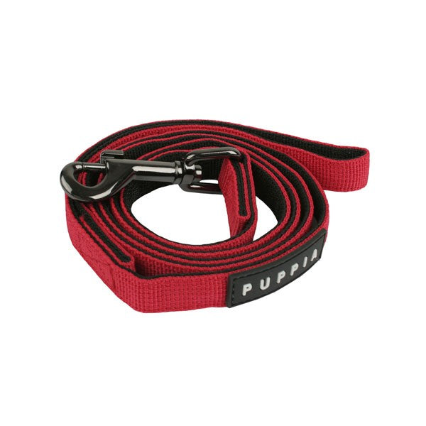 Polyester Pet Leash: 4ft