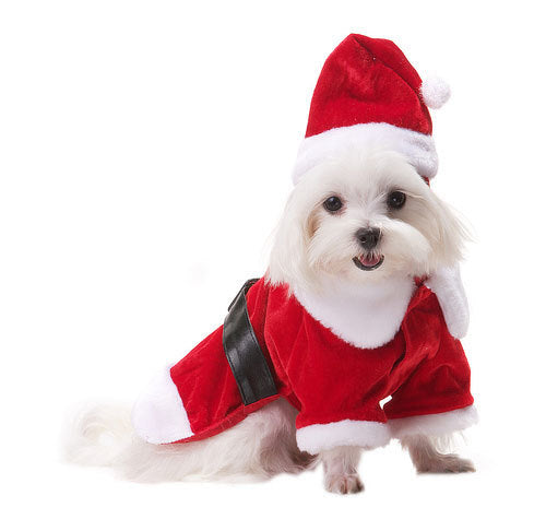 Santa Paws Dog Dress Coat