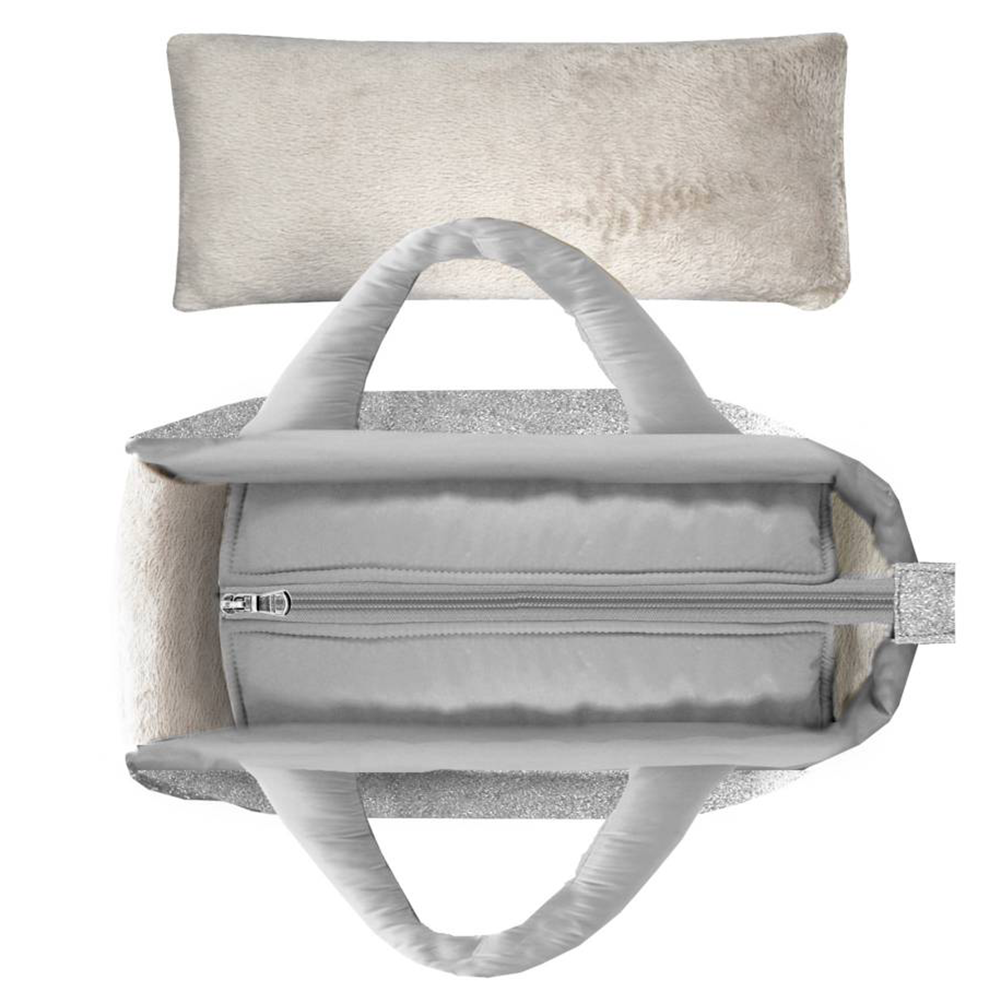 Silver Capsule Dog Carrier
